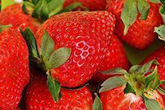 Produits locaux : fraise de Nyons