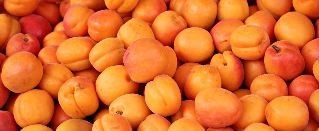 Vente directe de jus de fruit : abricot près de Vaison-La-Romaine