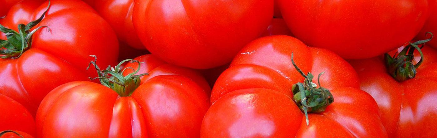 Producteur fruit et légume Mont-Ventoux