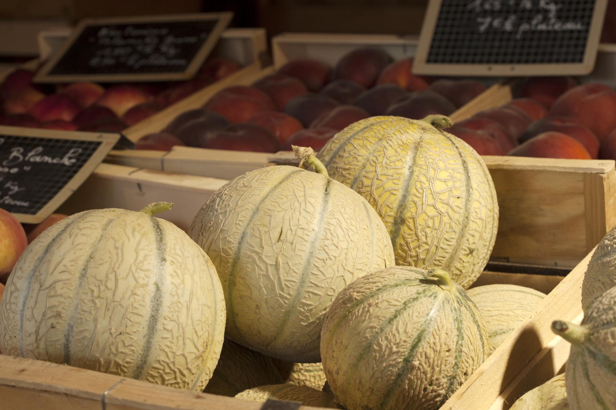 producteur de melon près de Nyons